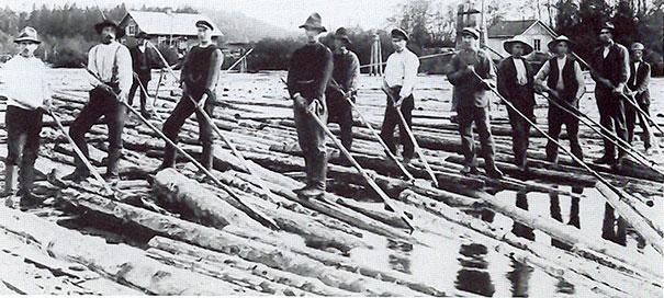 17 - 8 Log Driver