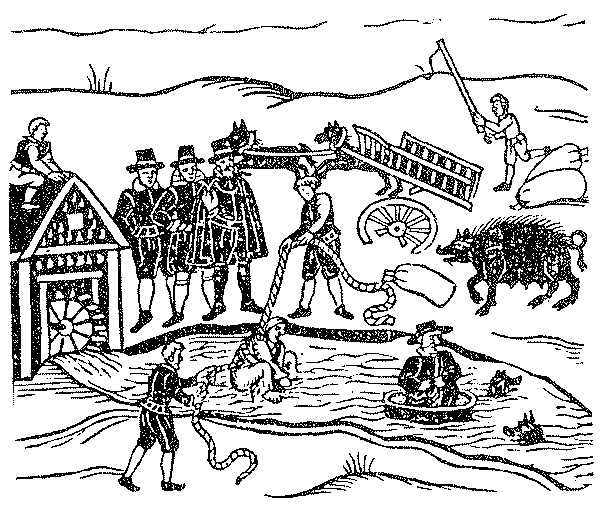 Witchy weirdness: 8 historical ways to spot a witch