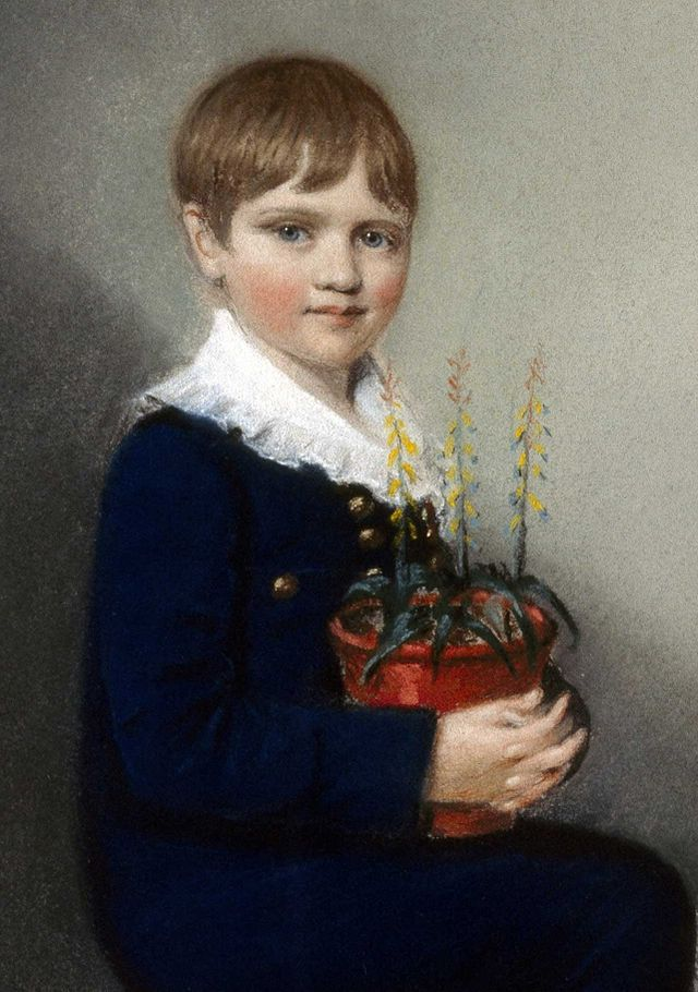 Darwin at age 7, 1816