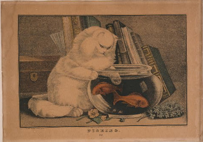 Vintage cats 5