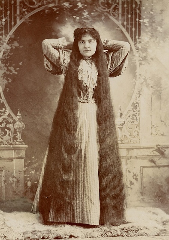Victorian Hairstyles, Long 2